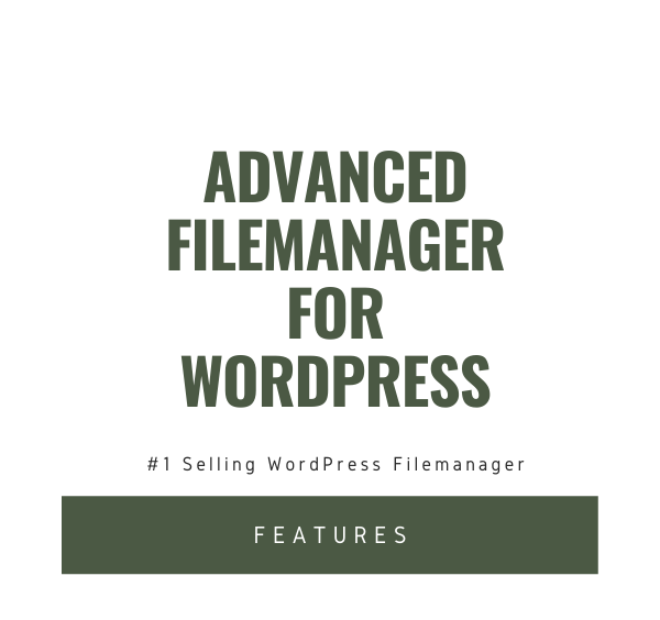 File Manager Plugin For WordPress 3