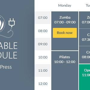 Timetable Responsive Schedule For WordPress
